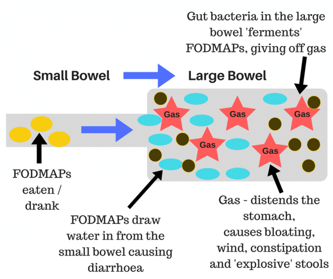 low FODMAP diet diagram