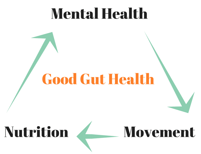 triangle with mental health, nutrition and movement - showing how gut health incorporates all