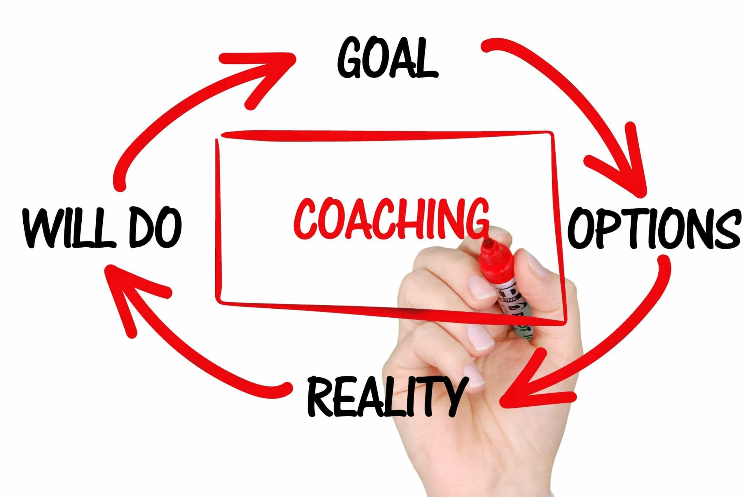 dietitian mentoring