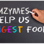 Which Digestive Enzymes are Good For IBS?