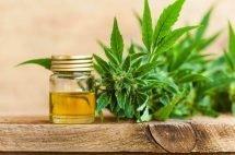 CBD oil IBS treatment