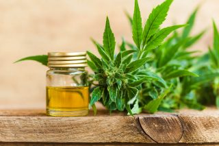 CBD oil IBS treatment