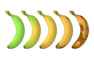 Bananas Cause Constipation
