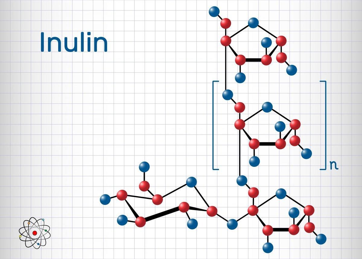 inulin FODMAP
